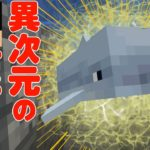 【カズクラ】異次元の速さでイルカさん連れてきたぜ!マイクラ実況 PART313