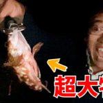 【釣り】晩飯を釣りに出かけたらまさかの超大漁
