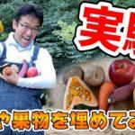 【実験】野菜や果物をそのまま植えたら芽は出るのか?!一か月かけて検証!