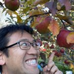 長野よりりんご収穫生放送!