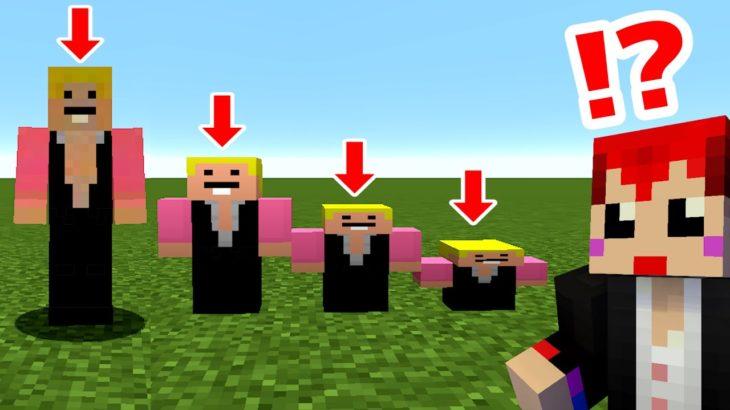 【コラボマイクラ】三人称ぺちゃんこさんをペッチャンコにしてみたw【赤髪のとも✖三人称】